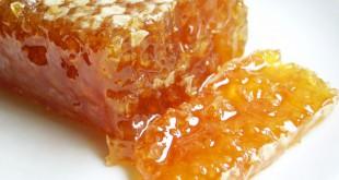 Lechenie-jazvy-propolisom-i-drugimi-produktami-pchelovodstva-003